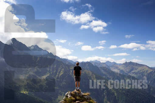 Article about Top Life Coaches and What the Really do