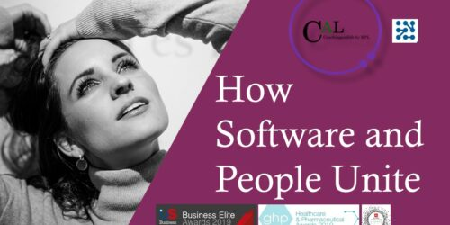 2020 Strategy How software and people unite