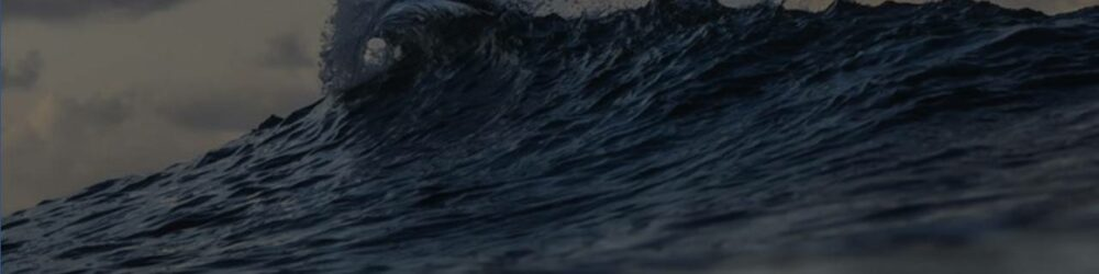 2020 Wave 1